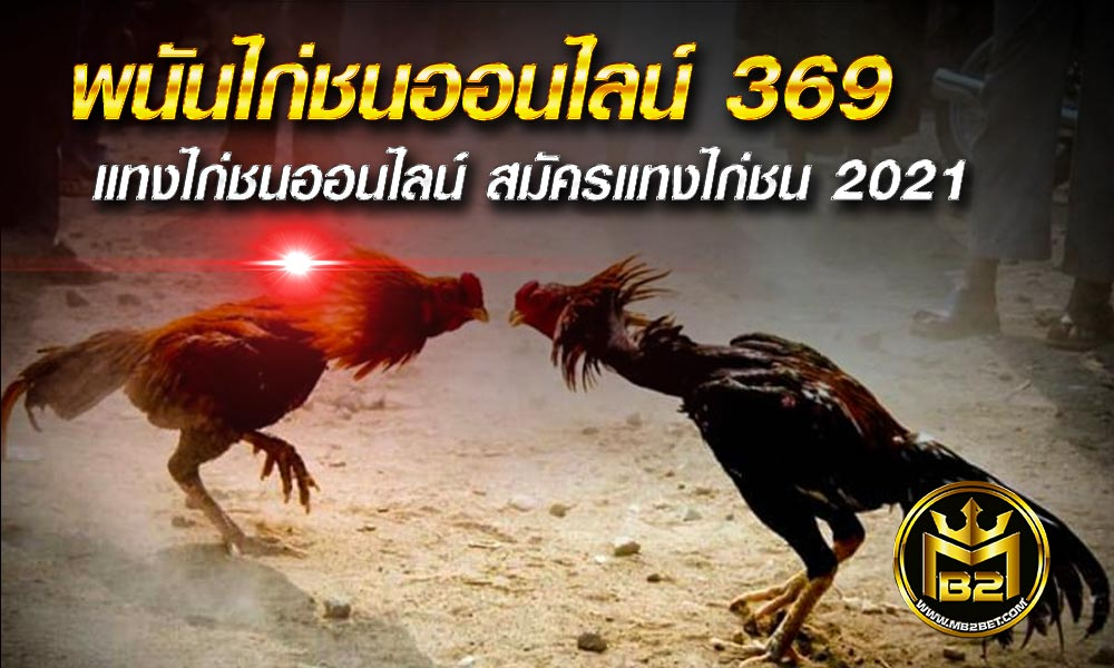 พนันไก่ชนออนไลน์ 369 แทงไก่ชนออนไลน์ สมัครแทงไก่ชน 2021