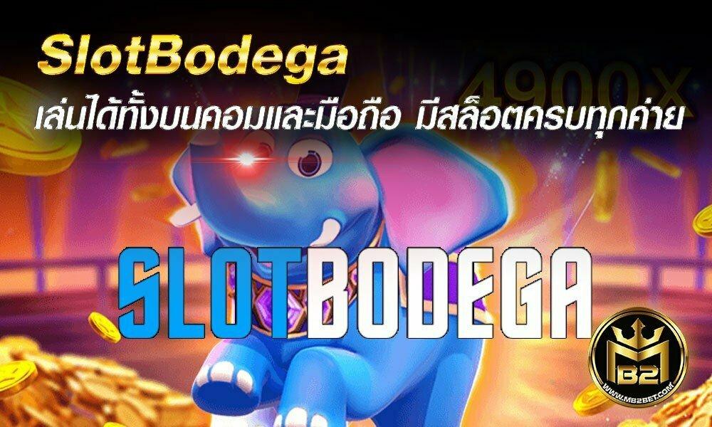 SlotBodega เล่นได้ทั้งบนคอมและมือถือ มีสล็อตครบทุกค่าย 2021